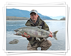 Chum Salmon Fishing in BC