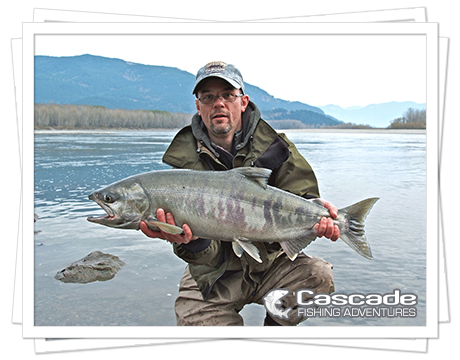 Cascade Chum Salmon Fishing in BC