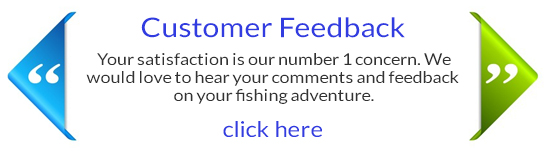 Cascade Customer Feedback