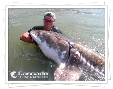 Cascade Sturgeon Fishing in BC