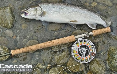 Fly fishing gear to catch trout