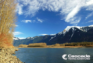 The Fraser River and Snow Capped Mountains