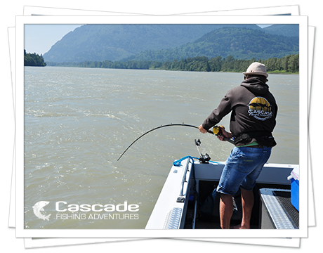 Cascade Platinum 8 Hour Fishing Trip